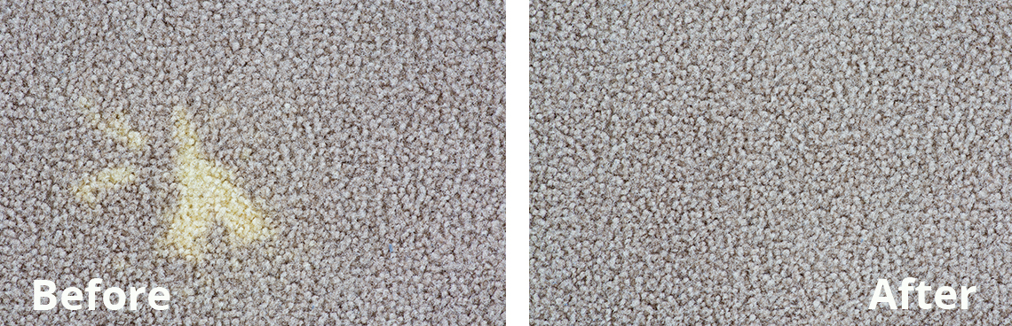 Carpet Dyeing Before & After