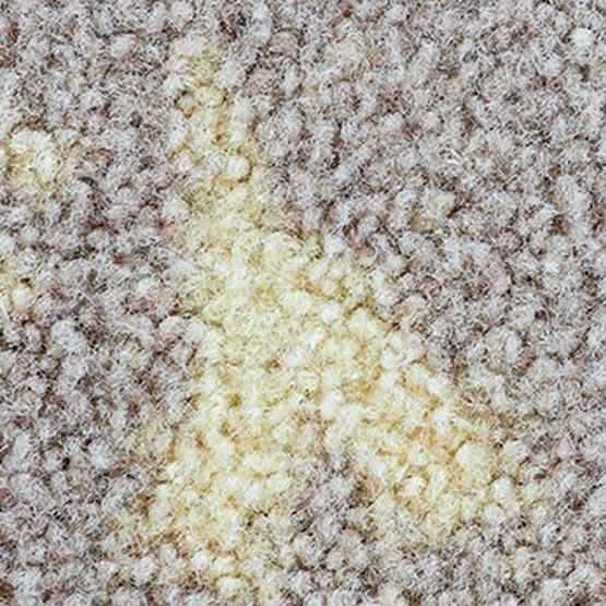 Carpet Dyeing Repair
